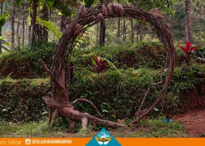 spot-selfie-dari-akar-pohon-di-buper-pleseran