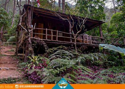 Rumah Panggung di Sekar Jinggo Sekipan